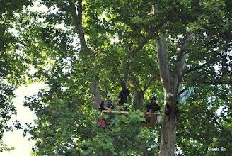 Photo: Großdemo im Park Samstag, 18.09.2010MittlererSchlossgarten