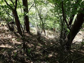 下に林道(左は絶壁)