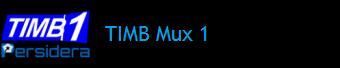 TIMB MUX 1