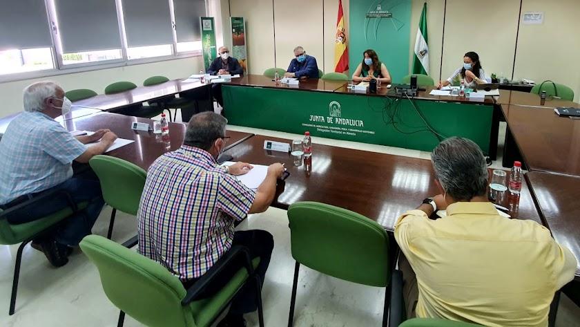 Reunión de la consejera Carmen Crespo y representantes de Coexphal en Almería.