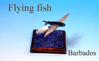 Flying fish -Barbados-