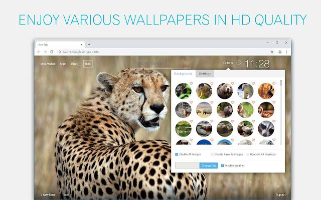 Wild Animals Wallpaper HD New Tab Themes