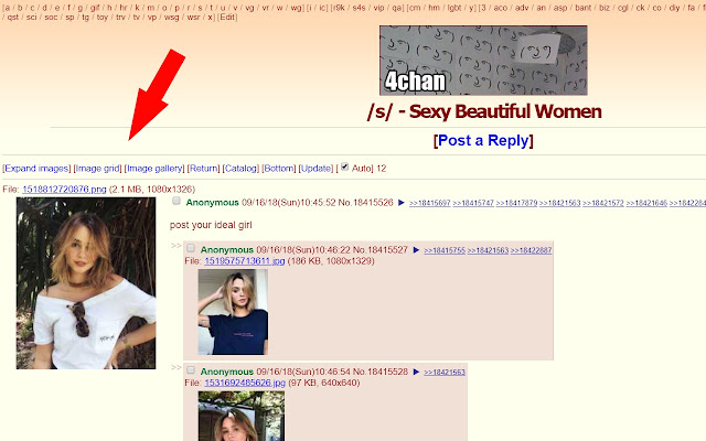 4chan / 4channel image view