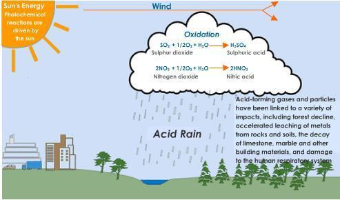 an analysis of the effects and dangers of acid rain in the environment 2014-12-18 find patient medical information for ascorbic acid (vitamin c) oral on webmd including its uses, side effects and safety, interactions, pictures, warnings and.