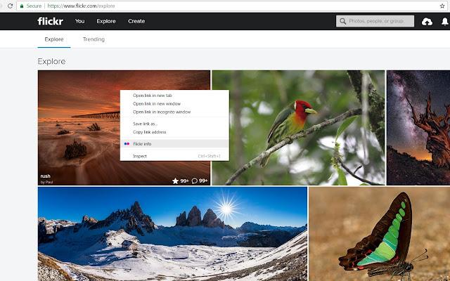 Flickr - quick user info