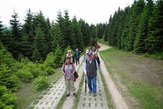 Photo: Wanderung auf den ehem. Glatzer Wegen im Harz