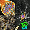3D Biology + icon