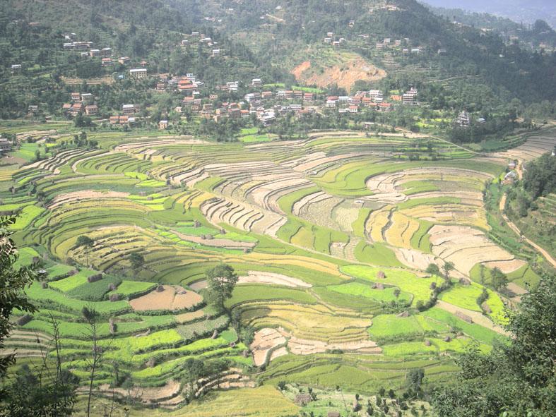 Nepal 2011 di ManuArk