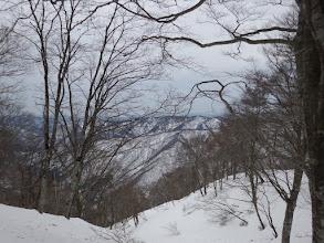 山頂からは南に僅かな展望
