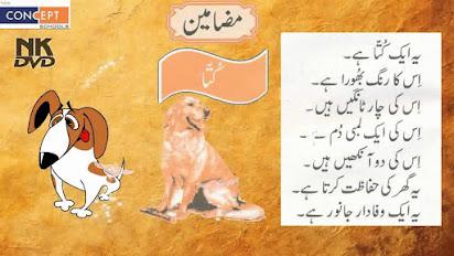 My Favourite Pet Dog Essay