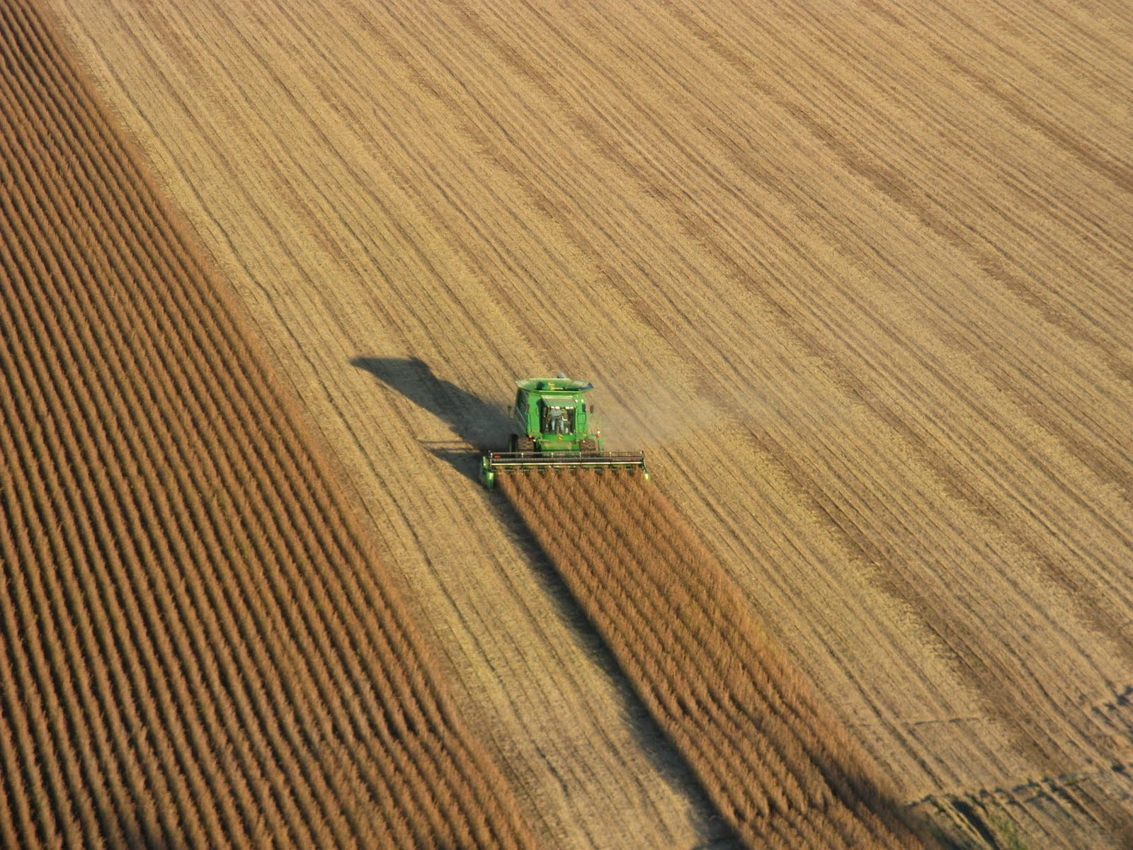 Photo: Neighbor Dale is hard at work harvesting soybeans