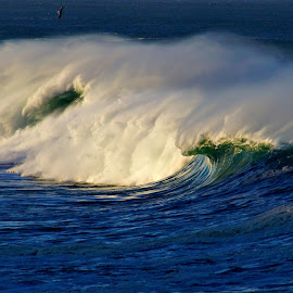 A spot of light 3 by Gaylord Mink - Landscapes Waterscapes ( waves, ocean, light, water, mist )