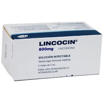 LINCOCIN SOL. INY.   600MG/2ML CAJA X 5 VIAL CLORHIDRATO DE LINCOMICINA