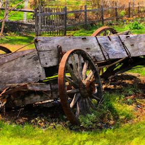 Retired  by Marsha Biller - Transportation Other ( old cart, antique, falling apart, broken down,  )