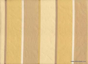 Photo: Lucknow 04 - Roullette Stripes - Color Quicksand