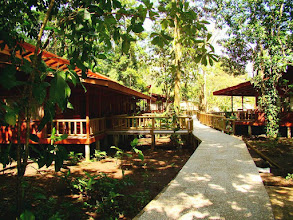 Photo: #007-Le Pachira Lodge à Tortuguero