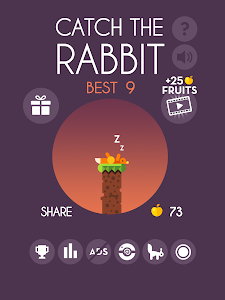 Catch The Rabbit v1.0.0