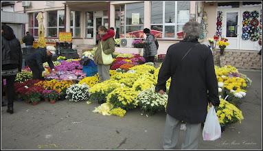 Photo: Crizanteme in Piata Centrala Agroalimentara - 2017.11.01