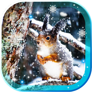Winter Squirrel live wallpaper