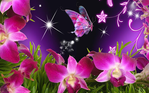 Download Neon Butterfly Wallpaper Free For Android Neon Butterfly Wallpaper Apk Download Steprimo Com