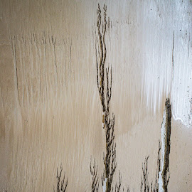 Lines in the sand by Brad Cheek - Abstract Patterns ( water, sand, trees, sea, light )
