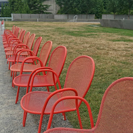 Chairs in a row by Anita Elder - City,  Street & Park  City Parks ( red, chairs, perspective, seats, park )