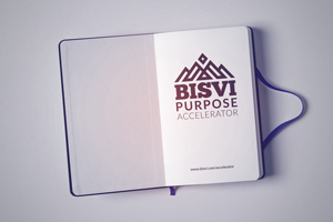 Bisvi Purpose Accelerator