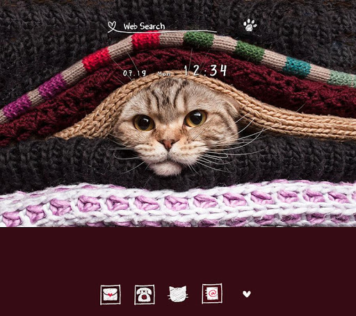 Cat  Wallpaper Cat Sandwich 1.0.0 Windows u7528 1