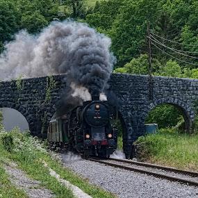 Zgodovinski vlak by Milan Mihalič - Transportation Trains