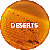Wallpapers from the desert