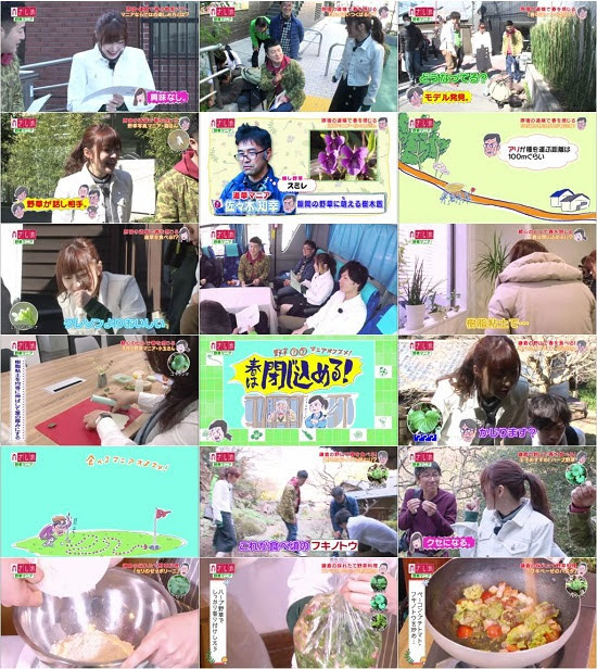 (TV-Variety)(720p) さし旅「野草マニアと巡る春の散策ツアー」 180413