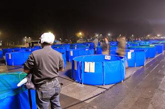 Photo: Marché de la carpe