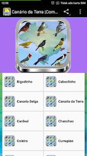 Chanchão Só Canto screenshot 4