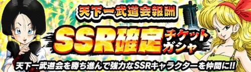 SSR確定(通常)チケットガチャ