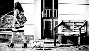 Photo: Dame mit Hund