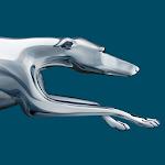 Greyhound Lines 6.5.901