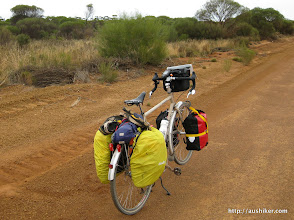 Photo: Surly Long Haul Trucker on the Norseman-Hyden Road