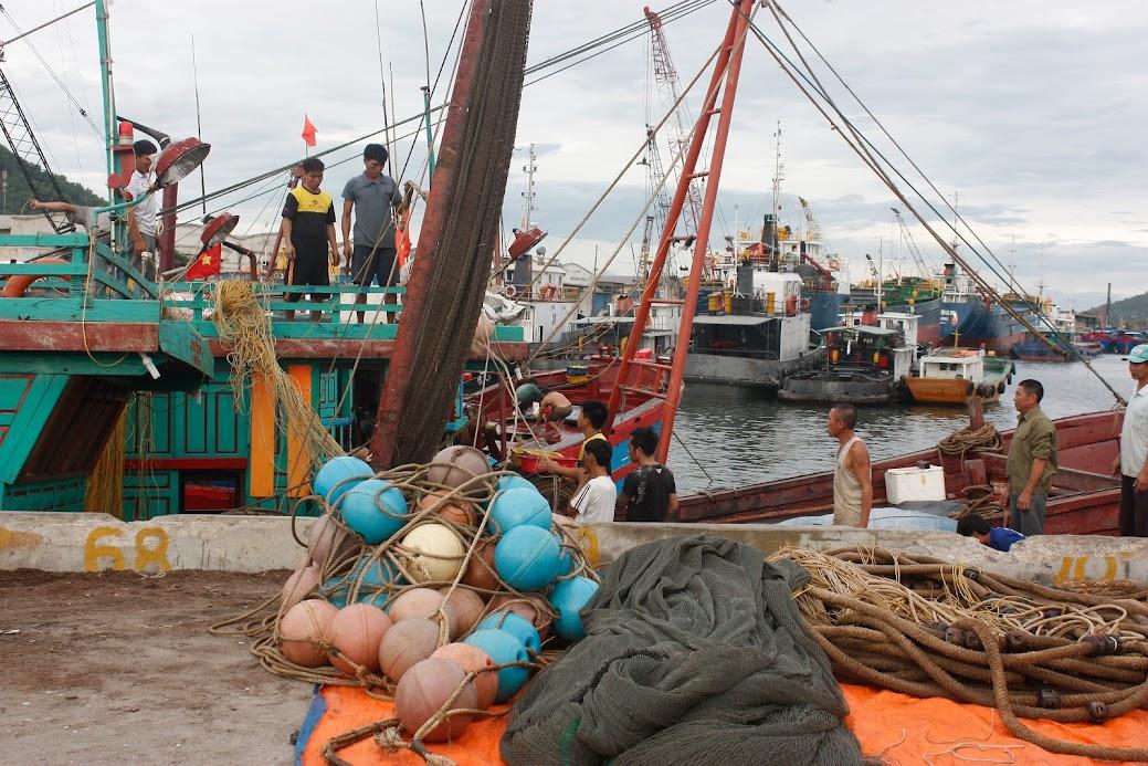 Việc tăng cường thanh, kiểm tra, kiểm soát nghề cá góp phần thúc đẩy nghề cá phát triển bền vững, đảm bảo sinh kế lâu dài cho ngư dân