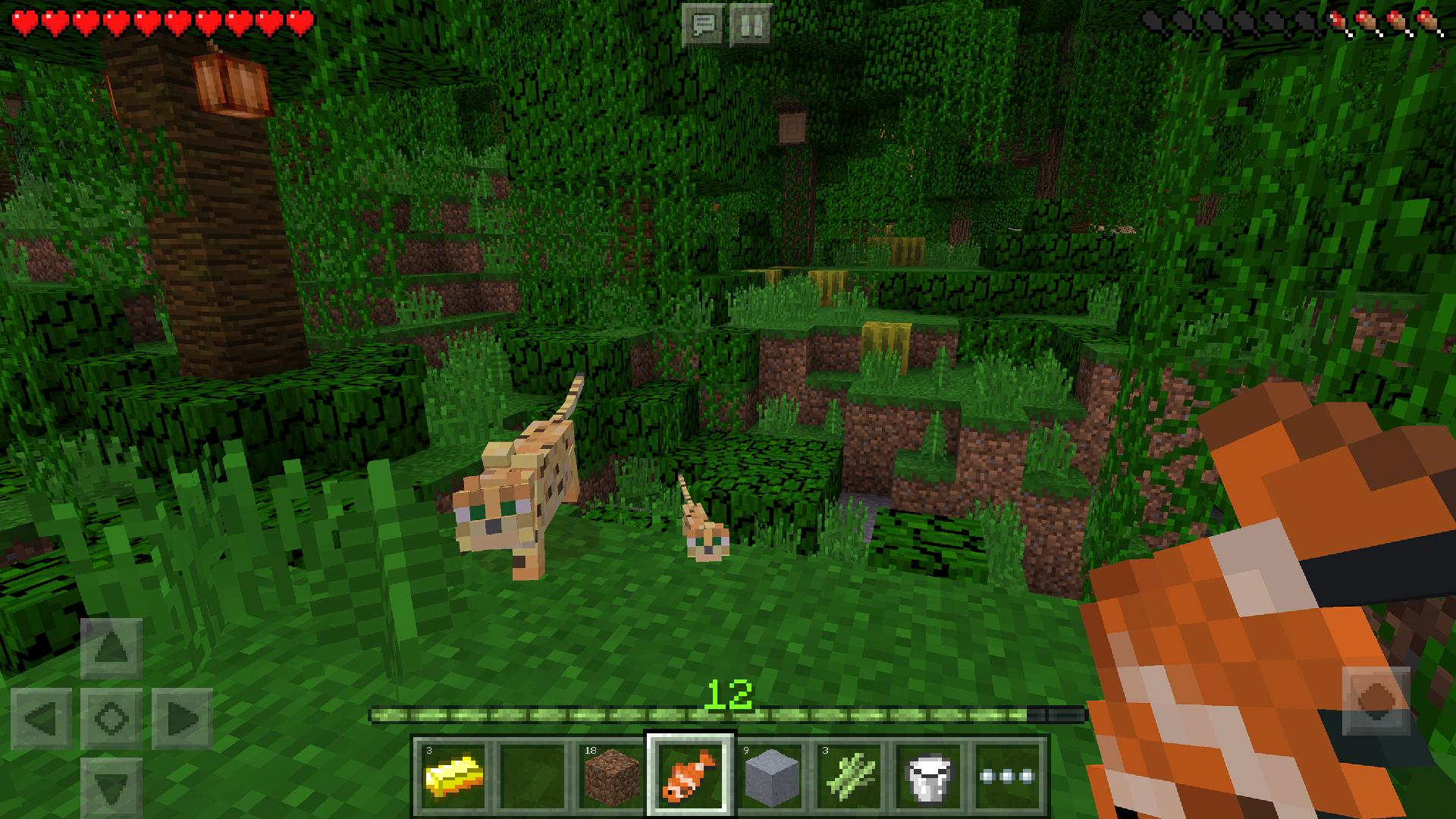 Minecraft: Pocket Edition screenshot #9
