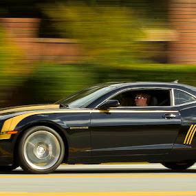 by Edwin Madera - Transportation Automobiles ( panning, camaro, speed, racing, cars, sports, yellow, fast, black )