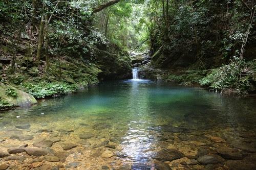 Vườn quốc gia Bạch Mã đẹp tựa tranh 4