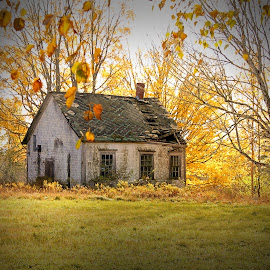 Abandoned School House by Lena Arkell - Buildings & Architecture Decaying & Abandoned ( fall, leaves, school, decay, autumn, abandoned,  )