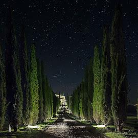 Omaggio a Vincent. by Pasquale Bimonte - Landscapes Starscapes