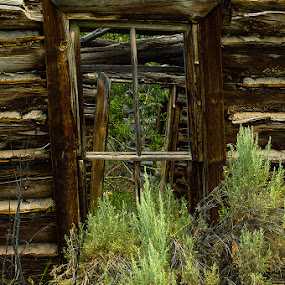 Broken Dreams by Thomas Jones - Buildings & Architecture Decaying & Abandoned ( infinity prime photography, decaying, oto ranch, cabin, montana, abandoned )