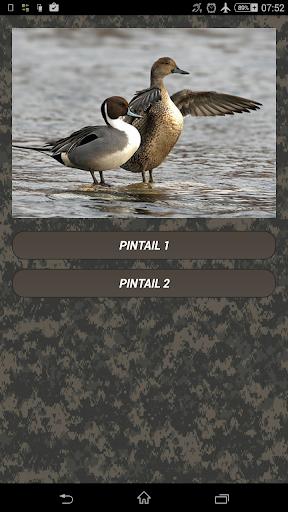 Duck hunting calls screenshots 1