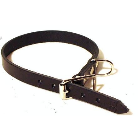 Halsband läder 12mm 30cm svart