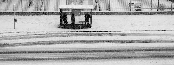 Photo: ... first snow ... (27.11.2010)