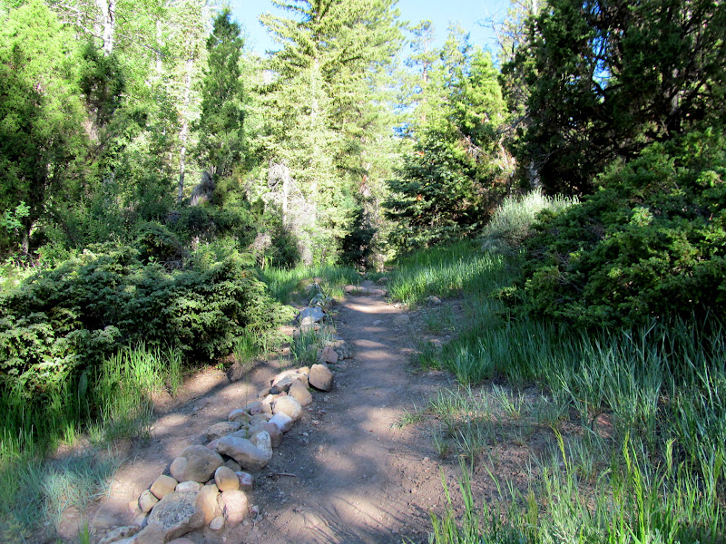 Photo: Beginning of the trail