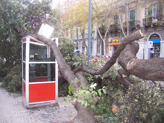 ramo sulla cabina di Antonio De Felice