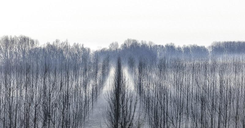 L'inverno di giuliobrega